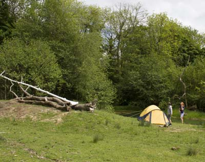 Nearly Wild Camping in action